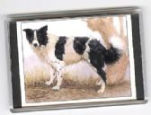 BORDER COLLIE LARGE FRIDGE MAGNET 2